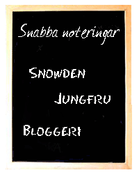 Snabba noteringar - Snowden, Jungfru, Bloggeri